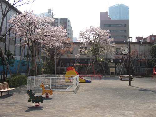 公園と桜の微妙な写真